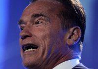 What Arnold Schwarzenegger Teaches About Internet Marketing
