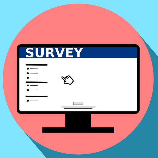 are online surveys worth it