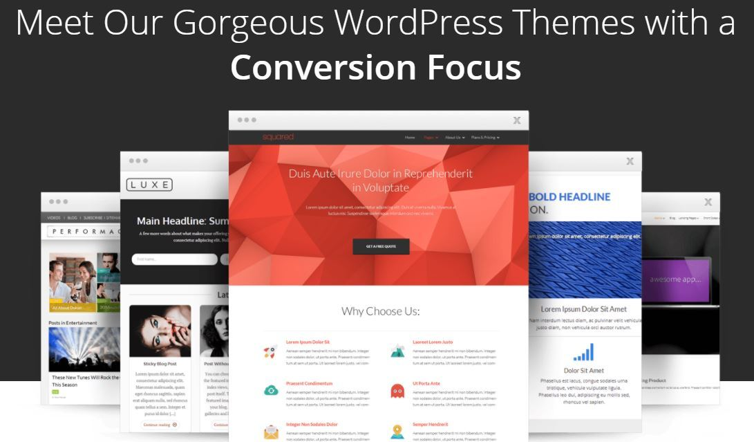 WordPress Themes Thrive Themes  2 Year Warranty