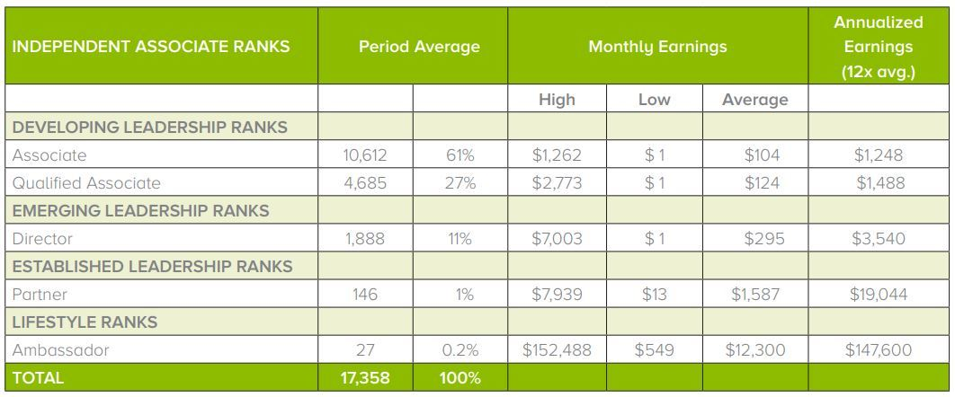 viridian energy income statement