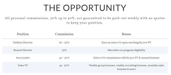 Optimized-What Is The Jewels By Park Lane Compensation Plan - Your Online Revenue