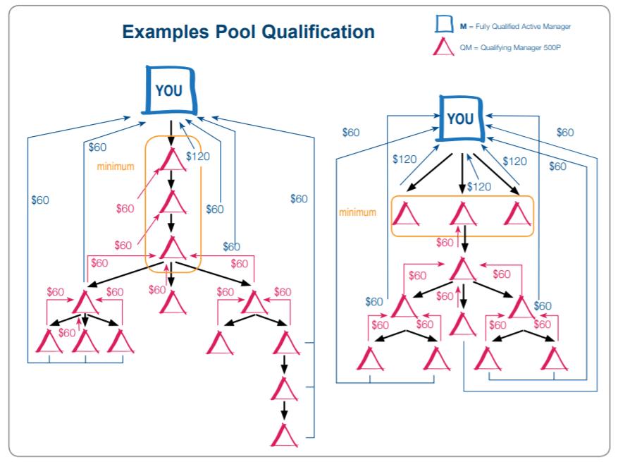 PM International Reviews Pool Qualification - Your Online Revenue-min